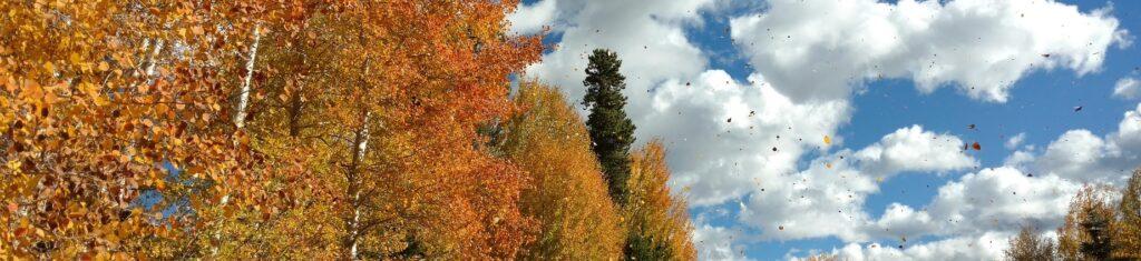 Gerade im Herbst und Winter kommt es immer wieder dazu, dass Lkws vom Wind erfasst und umgekippt werden (c) Pixabay
